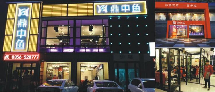 鼎中鱼加盟官网
