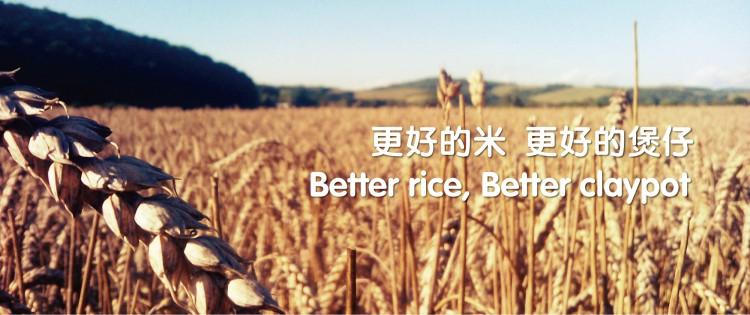 非常稻煲仔饭产品优势